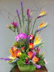 Bright And Bold Tropical Arrangement from Carl Johnsen Florist in Beaumont, TX