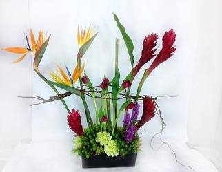 Modern Tropical Arrangement from Carl Johnsen Florist in Beaumont, TX