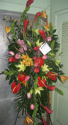 Tropical Tribute from Carl Johnsen Florist in Beaumont, TX