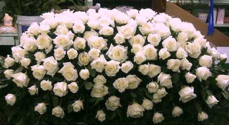 Full Sized White Rose Casket Cover  from Carl Johnsen Florist in Beaumont, TX