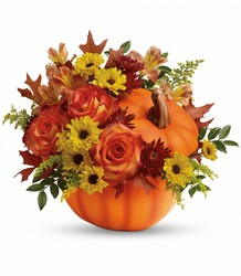 Teleflora's Warm Fall Wishes Bouquet from Carl Johnsen Florist in Beaumont, TX