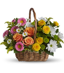 Sweet Tranquility Basket from Carl Johnsen Florist in Beaumont, TX
